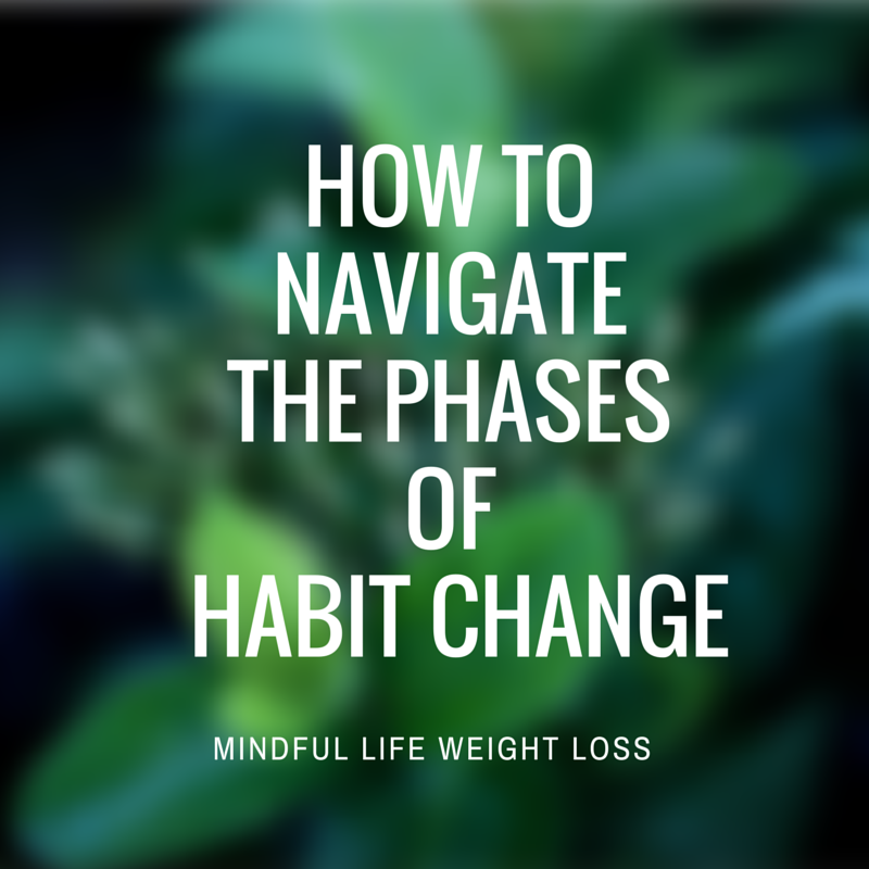 how to navigate the phases of habit