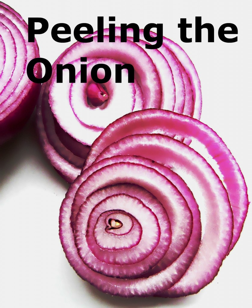 Red_onions_(cross-sections)